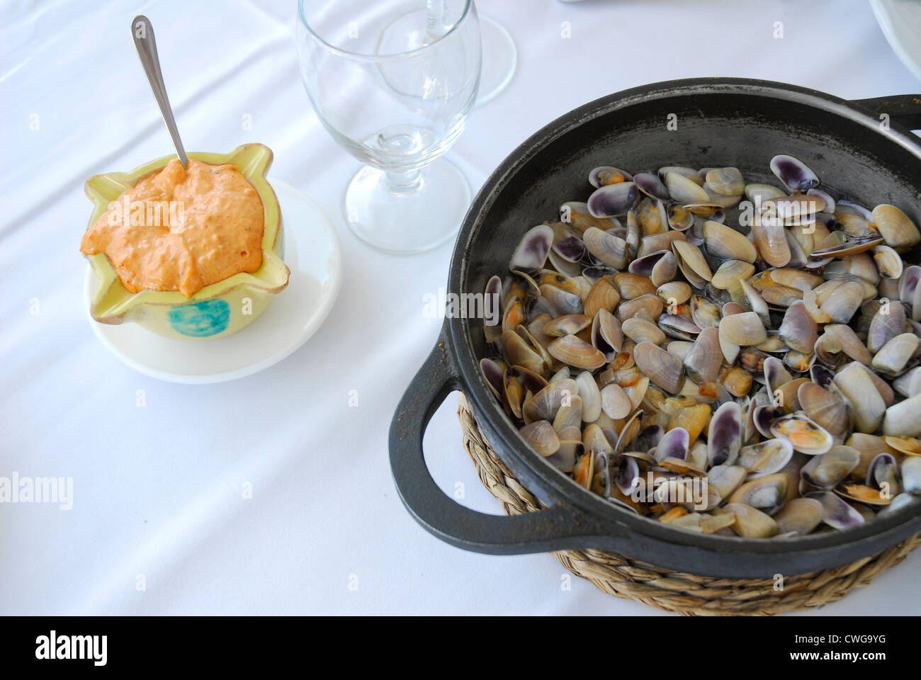 TELLERINA, (Donax trunculus) and romescu sauce tipical aperitif from Tarragona , costa brava , and Maresme on Catalonia Stock Photo