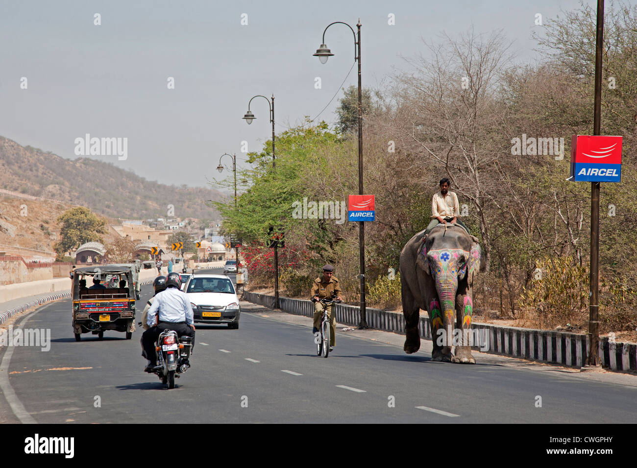 Mahout riding decorated Indian elephant on the road among traffic at Jaipur, Rajasthan, India - Stock Image