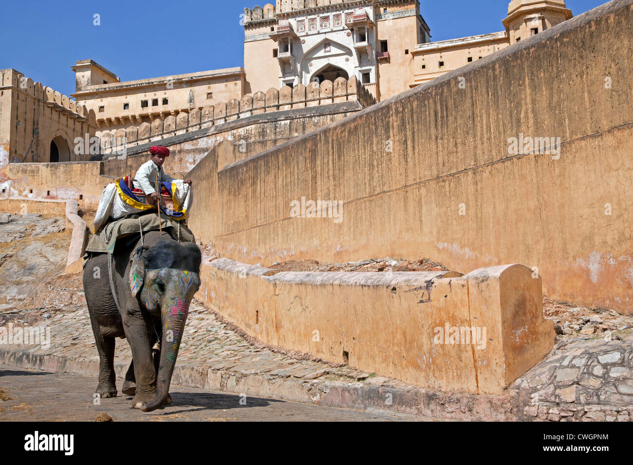 Mahout riding decorated Indian elephant at Amer Fort / Amber Fort, palace in red sandstone at Amer near Jaipur, - Stock Image
