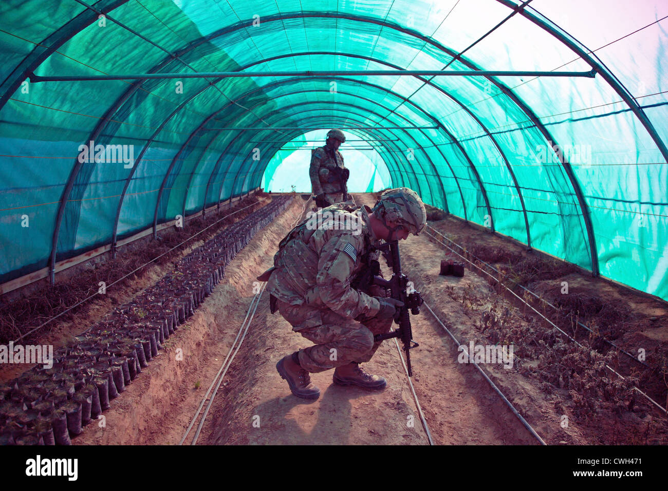 Two US soldiers inspect a greenhouse Dec. 28, 2011 in Mahmod-e Raqi district, Kapisa province, Afghanistan. The - Stock Image