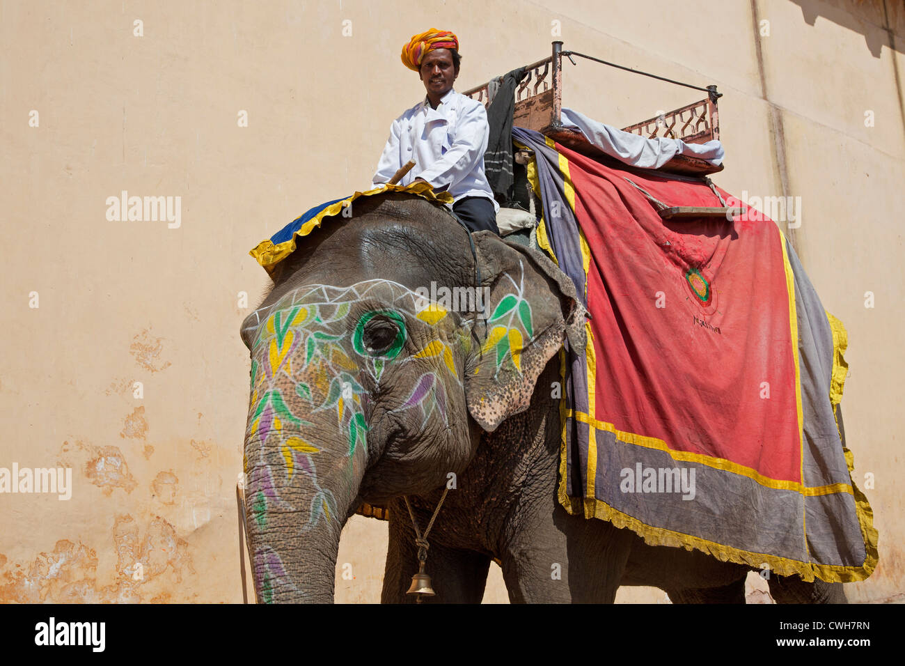 Mahout riding decorated Indian elephant for transporting tourists at Amer Fort / Amber Fort near Jaipur, Rajasthan, - Stock Image