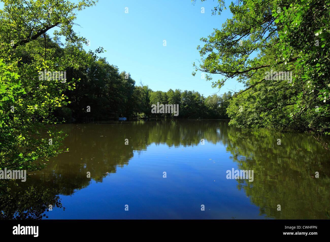 Naturschutzgebiet Niepkuhlen, Krefeld und Neukirchen-Vluyn, Niederrhein, Nordrhein-Westfalen - Stock Image