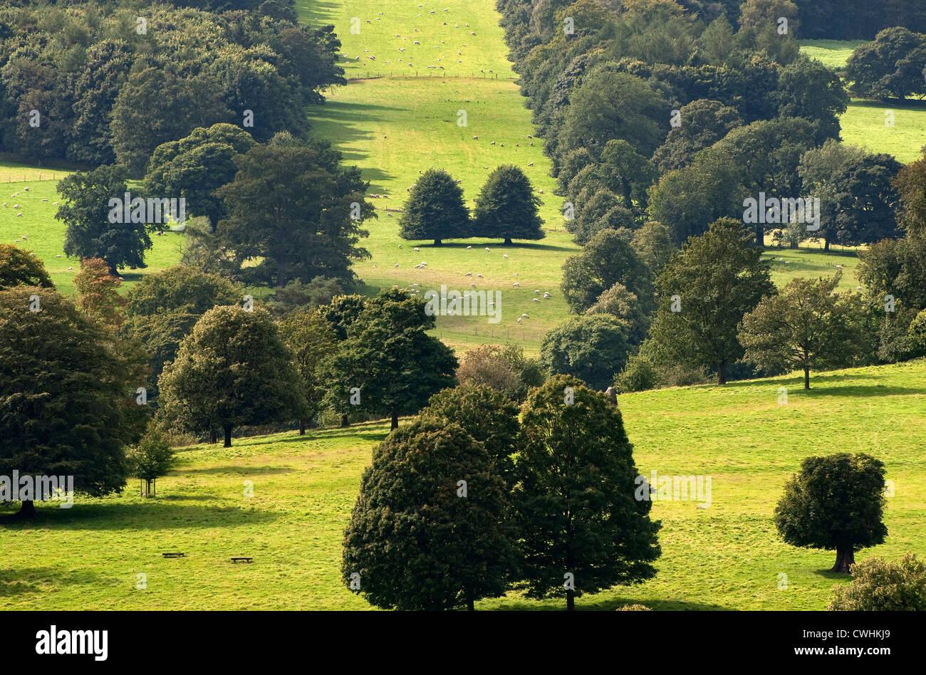 chatsworth estate, derbyshire, england - Stock Image