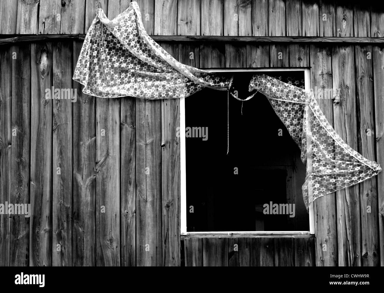 window - Stock Image