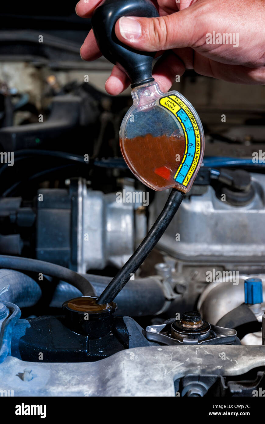 How To Check Antifreeze >> Do You Car Maintenance And Check The Antifreeze Stock Photo