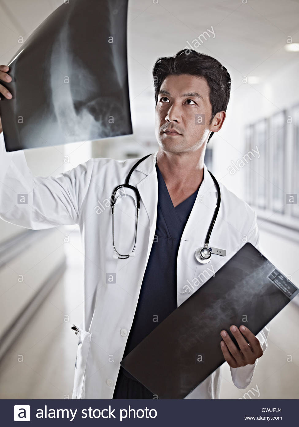 Doctor examining x-rays in hospital corridor - Stock Image
