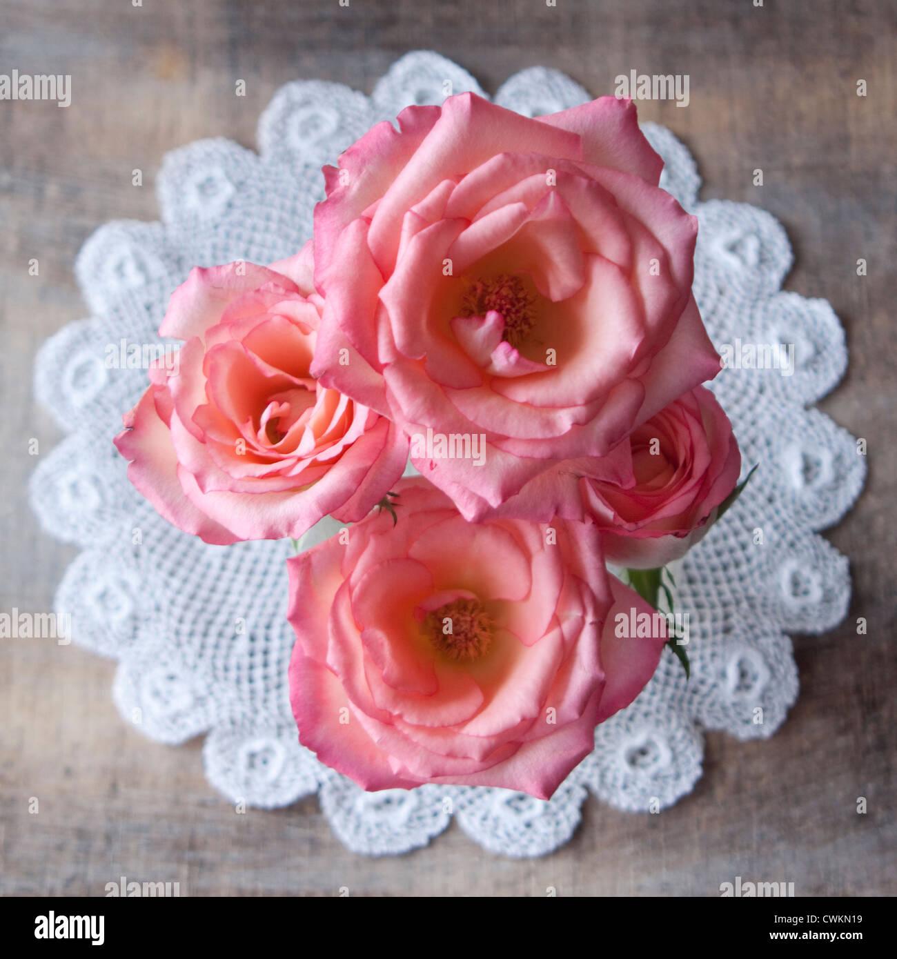roses on a table with decoration, shabby chic - Stock Image