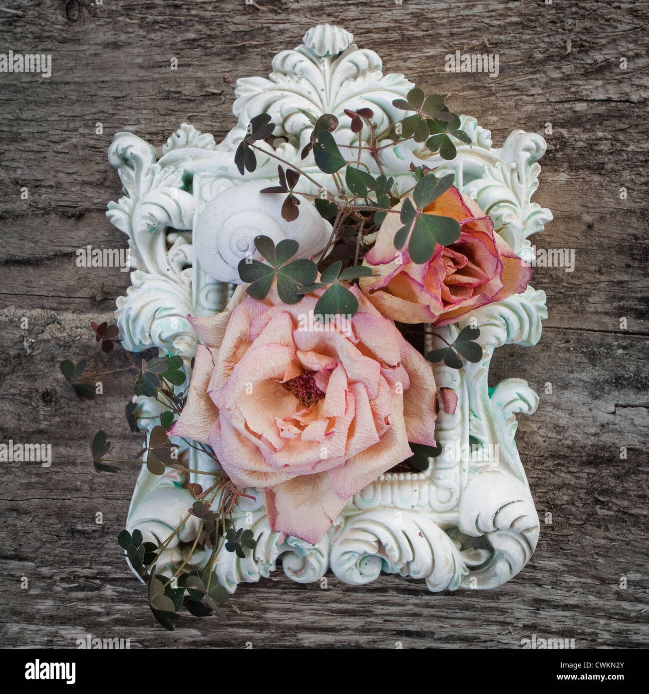 old, vintage frame, decorated with dry roses and clover on a wood background - Stock Image