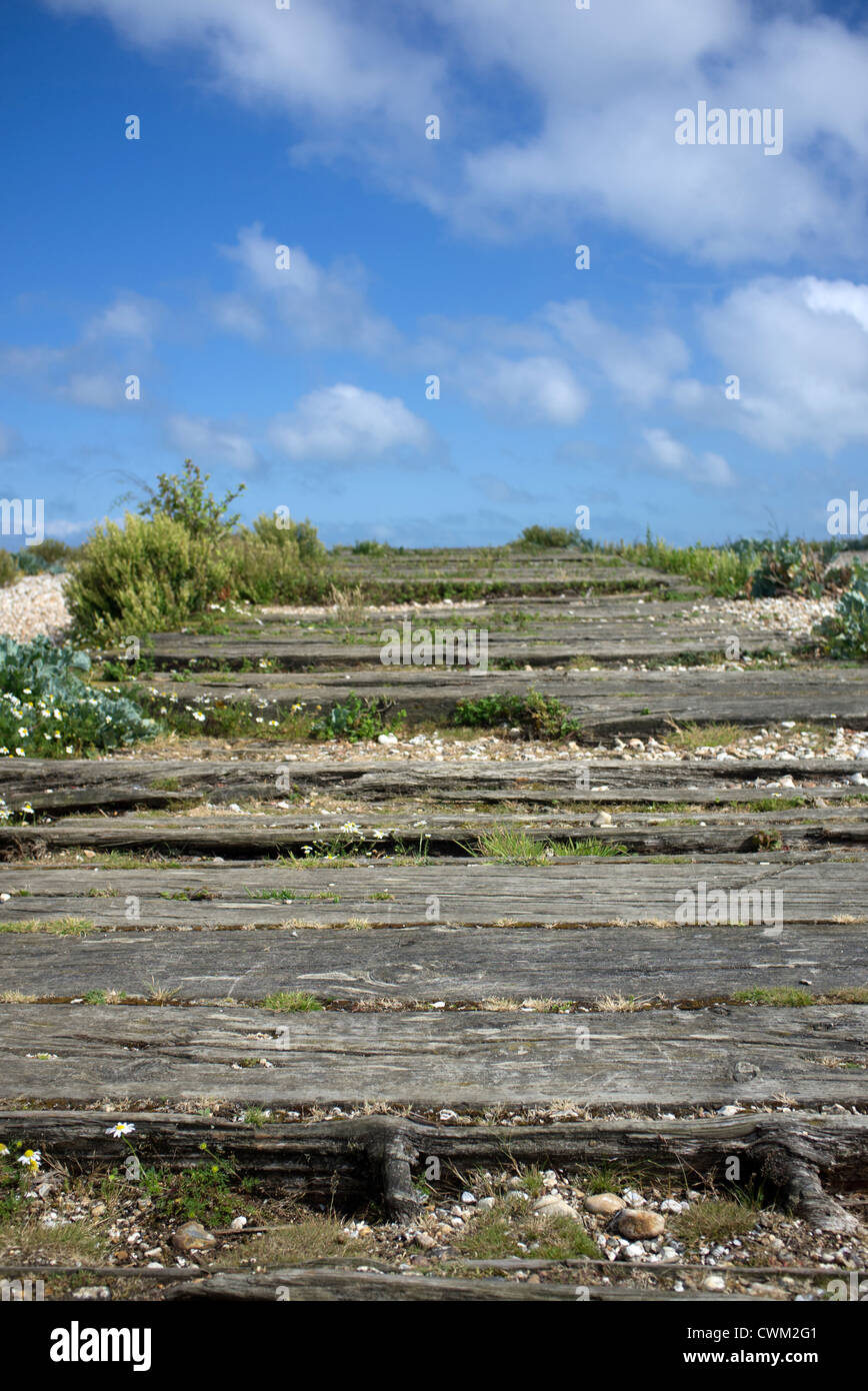 old wooden railway sleepers on the beach at Pagham Harbour Nature Reserve West Sussex - Stock Image