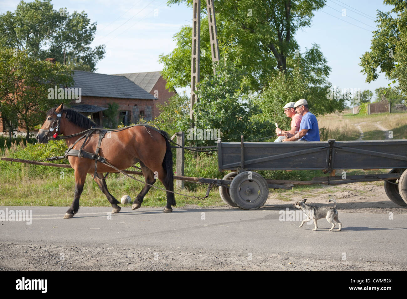 Couple of Polish gentlemen leaving country store with horse drawn wagon down village lane. Mala Wola Central Poland - Stock Image