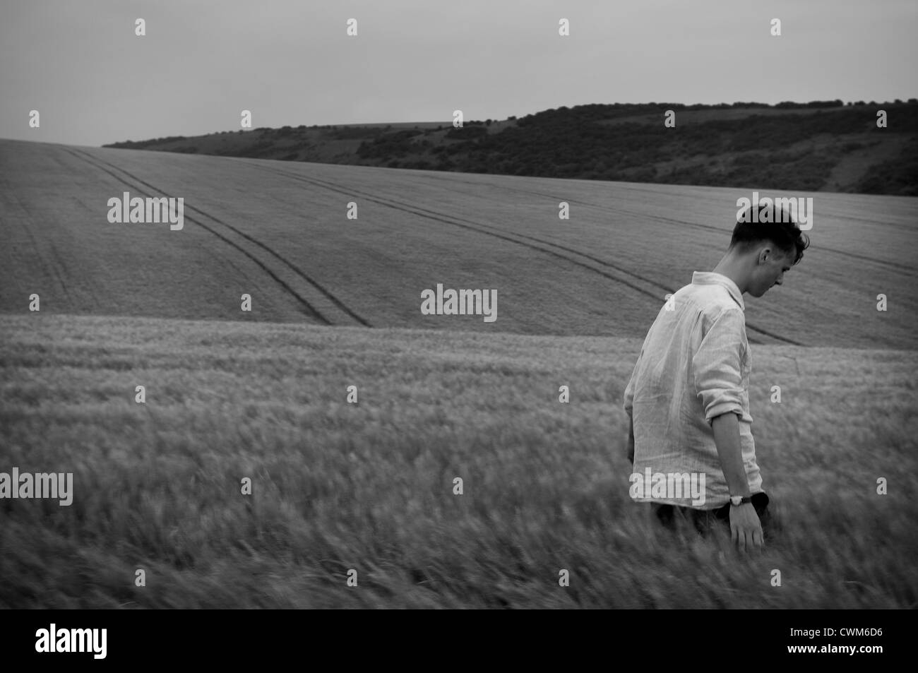 Young man walking through a wheat field in East Sussex, UK - Stock Image