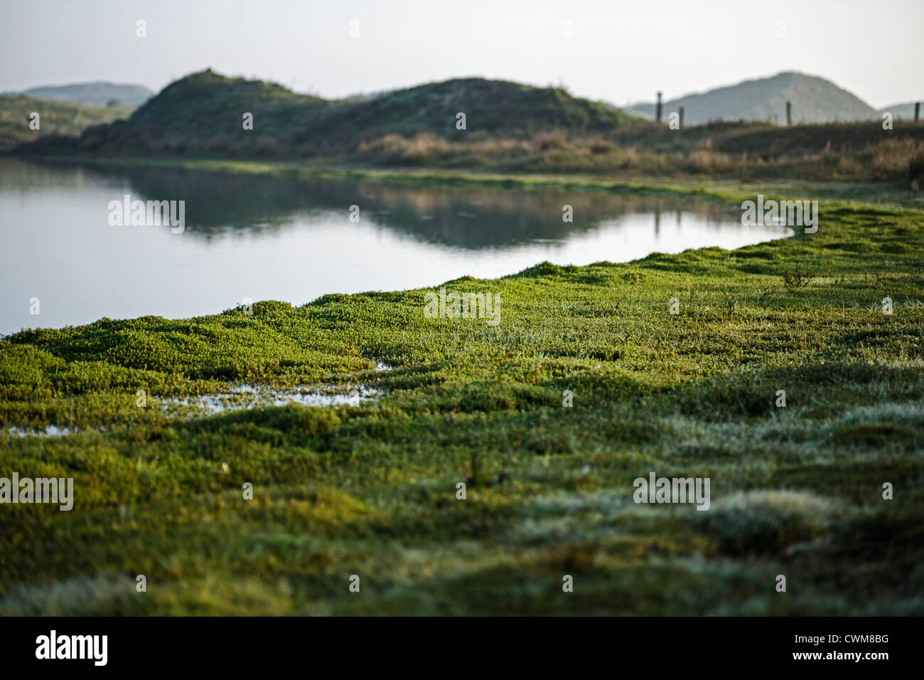Germany, View of Norderney Island Stock Photo