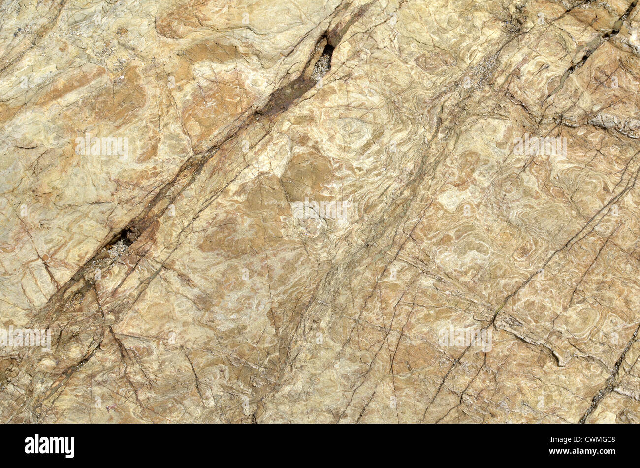 Cornwall - shoreline rock texture wallpaper background in region between Par Sands and Polkerris. Concept 'fall - Stock Image