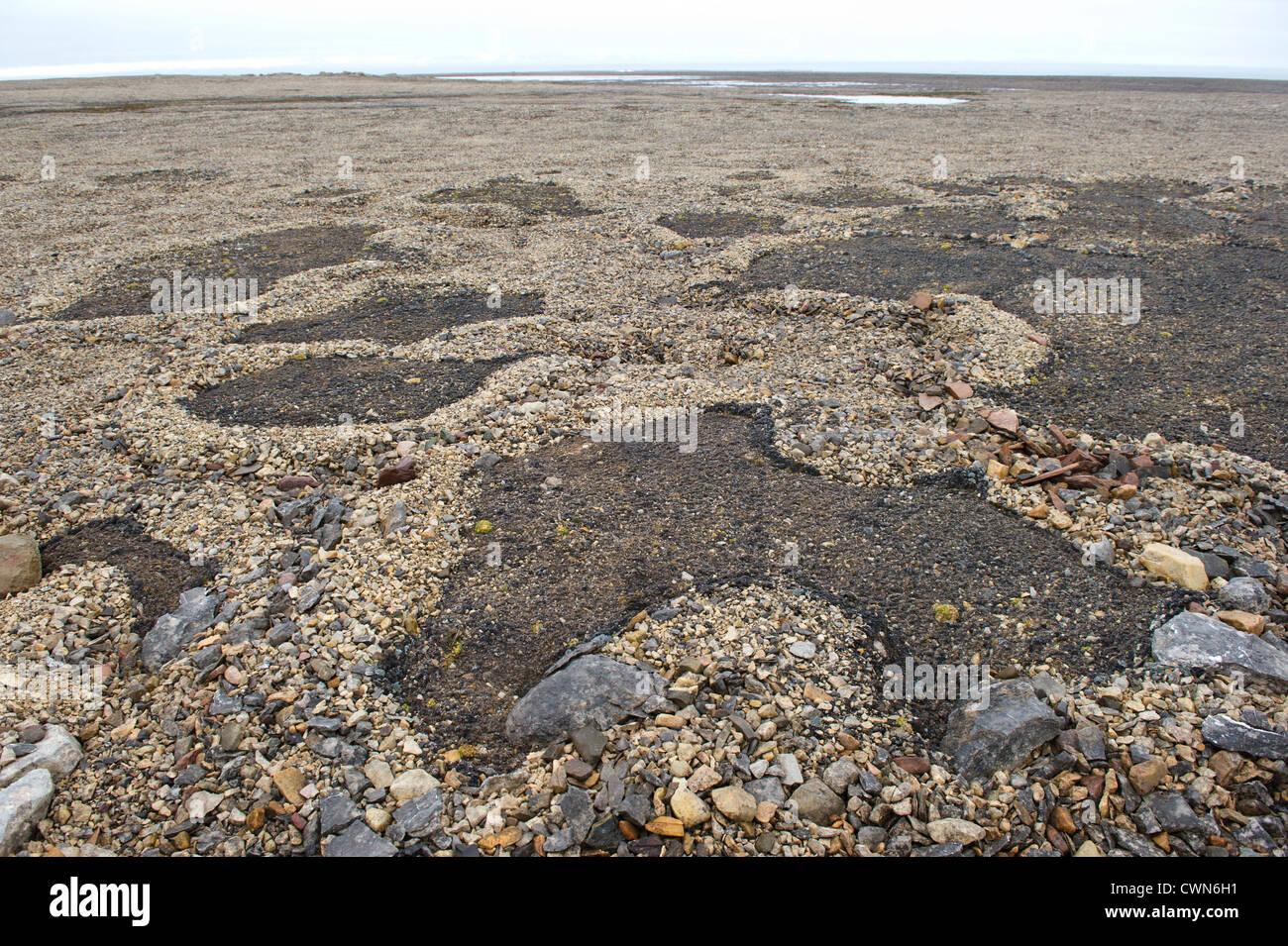 Permafrost soil stone formations, Murchisonfjord, Spitsbergen, Svalbard, Arctic - Stock Image