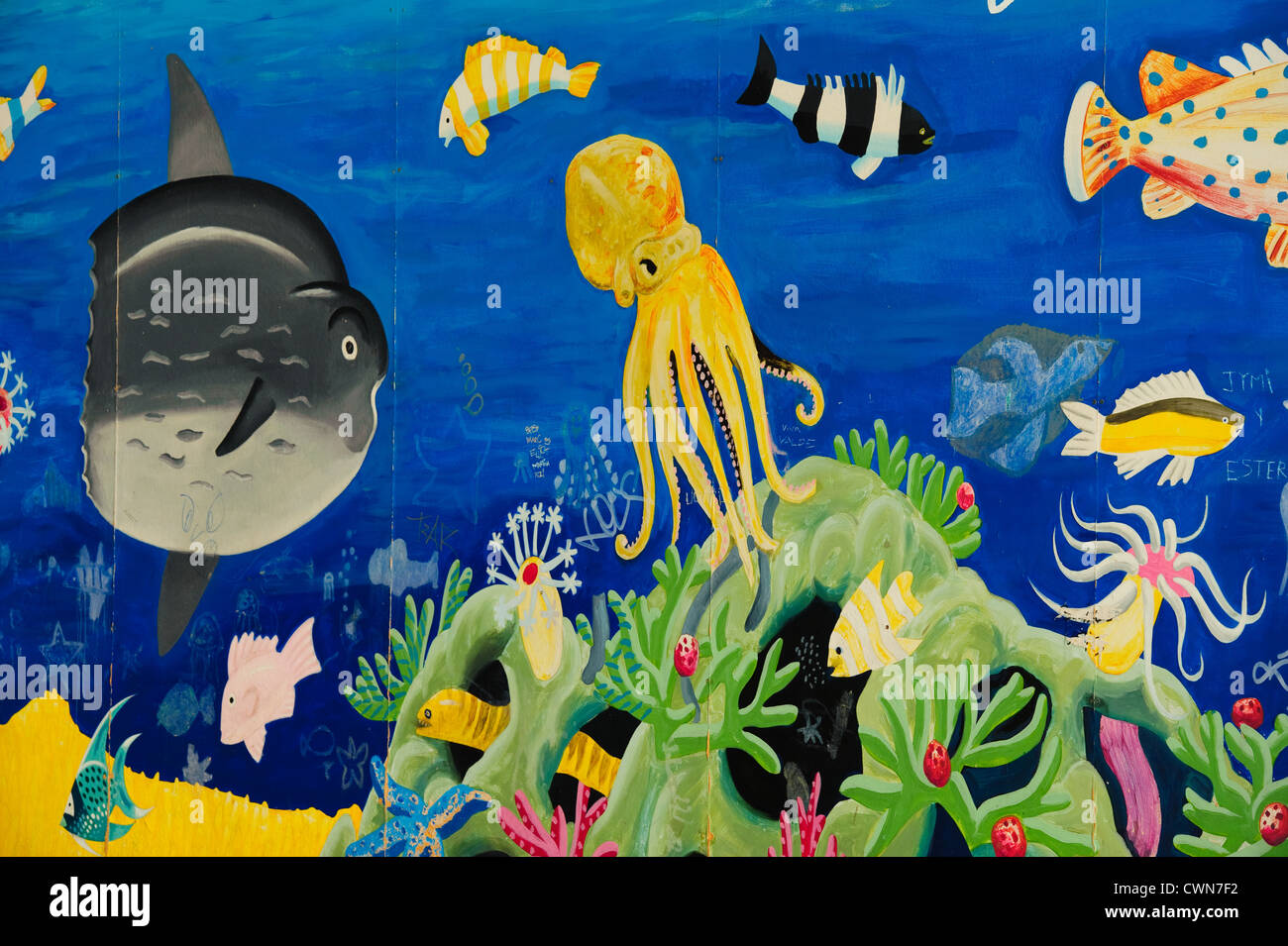 Sealife under water scene wall painting - Stock Image