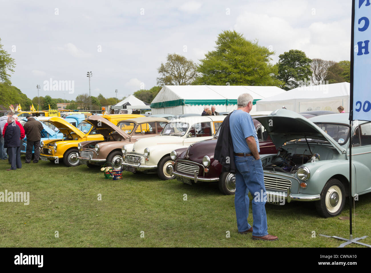 A line of Morris Minor classic cars on display at the Lancashire ...
