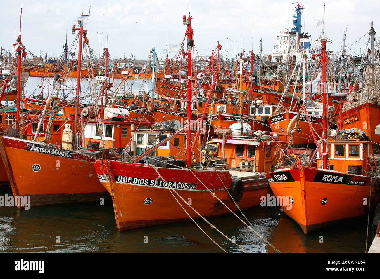 Fishing boats at the port, Mar del Plata, Argentina. - Stock Image
