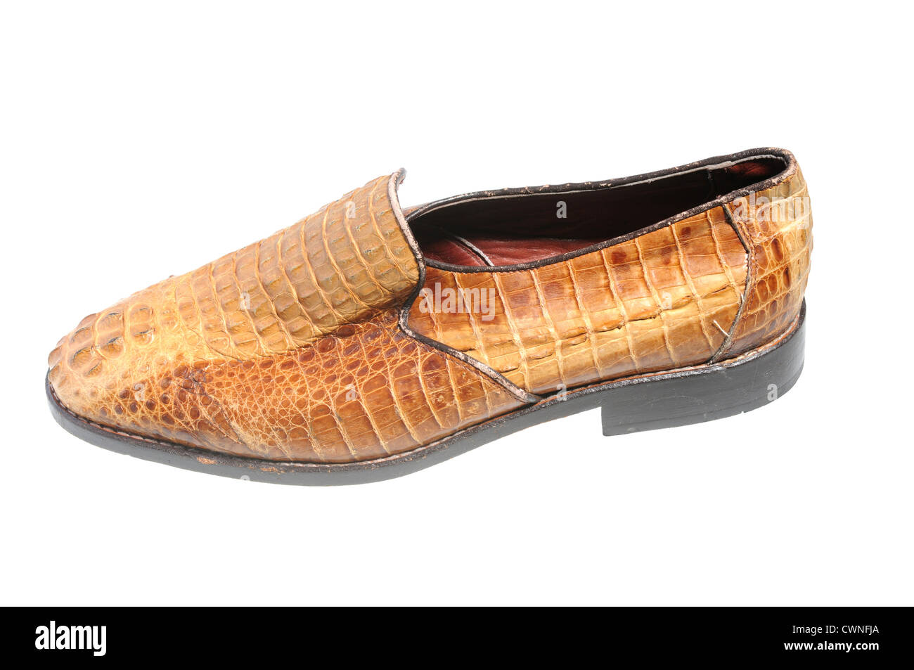 illegal endangered species product from CITES list - snake leather shoe isolated on white - Stock Image