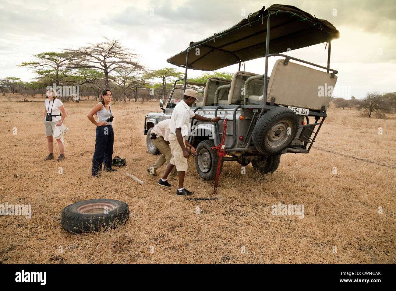 Tourists get out of the safari jeep while the guide and driver change a flat tyre, Selous Game reserve Tanzania - Stock Image