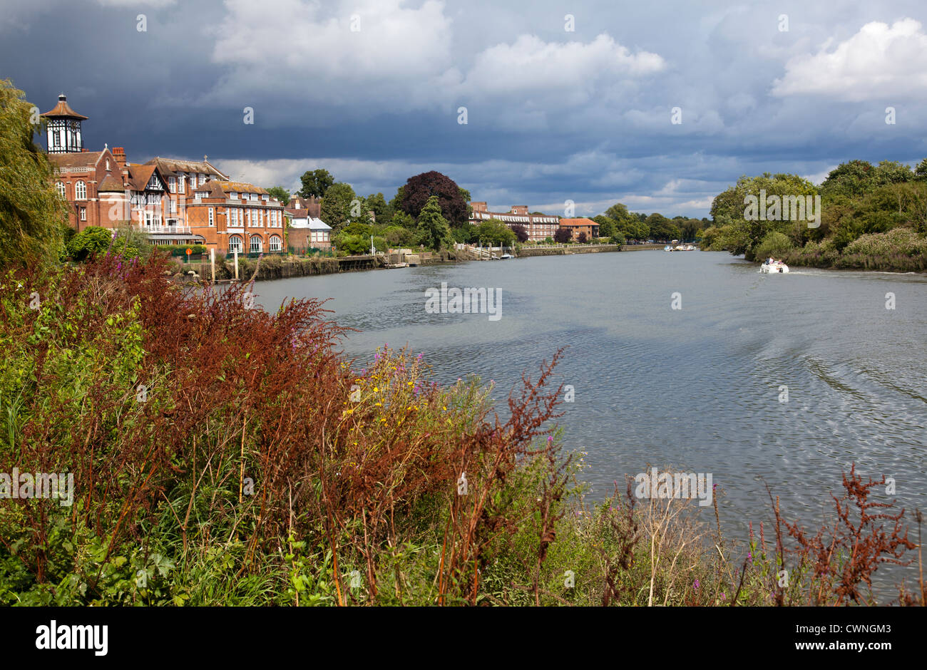 View down Thames from Radnor Gardens in Strawberry Hill with Radnor House Independent School on Left - Richmond - Stock Image