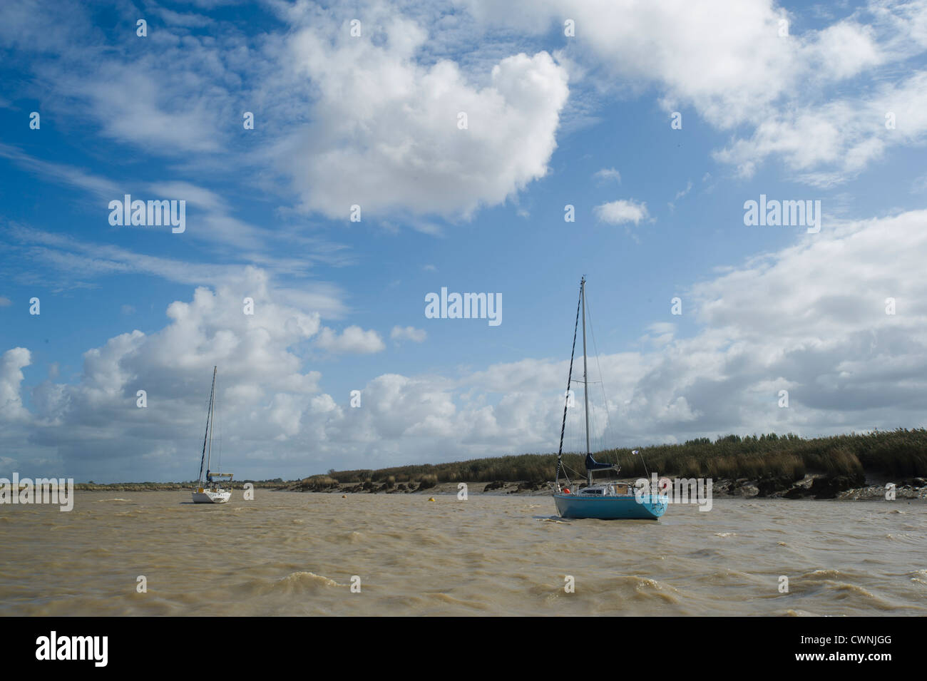 Anchorage on Charente river - Stock Image