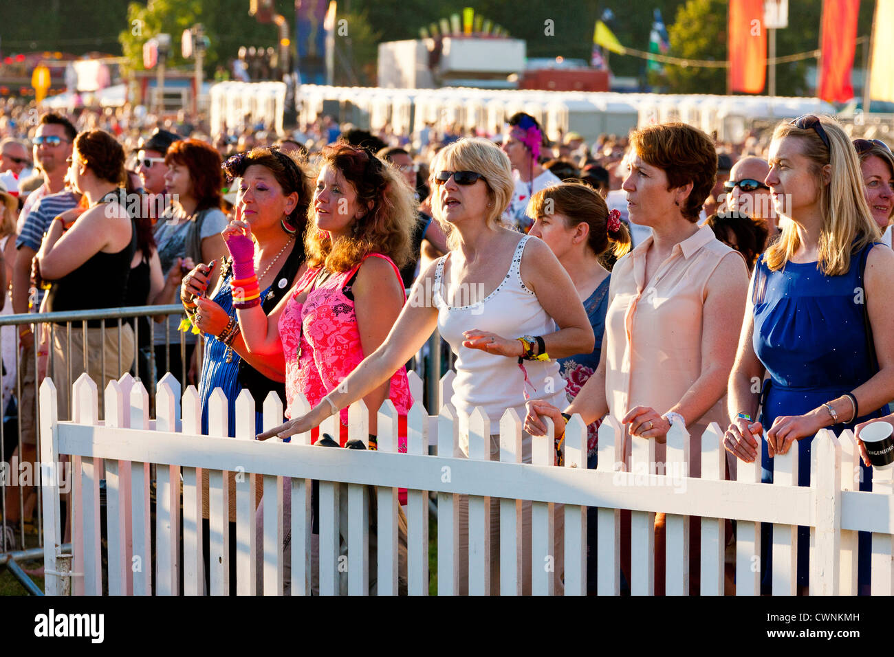 Part of the VIP section of the huge crowd at the Rewind Festival Henley on Thames 2012. JMH6060 - Stock Image