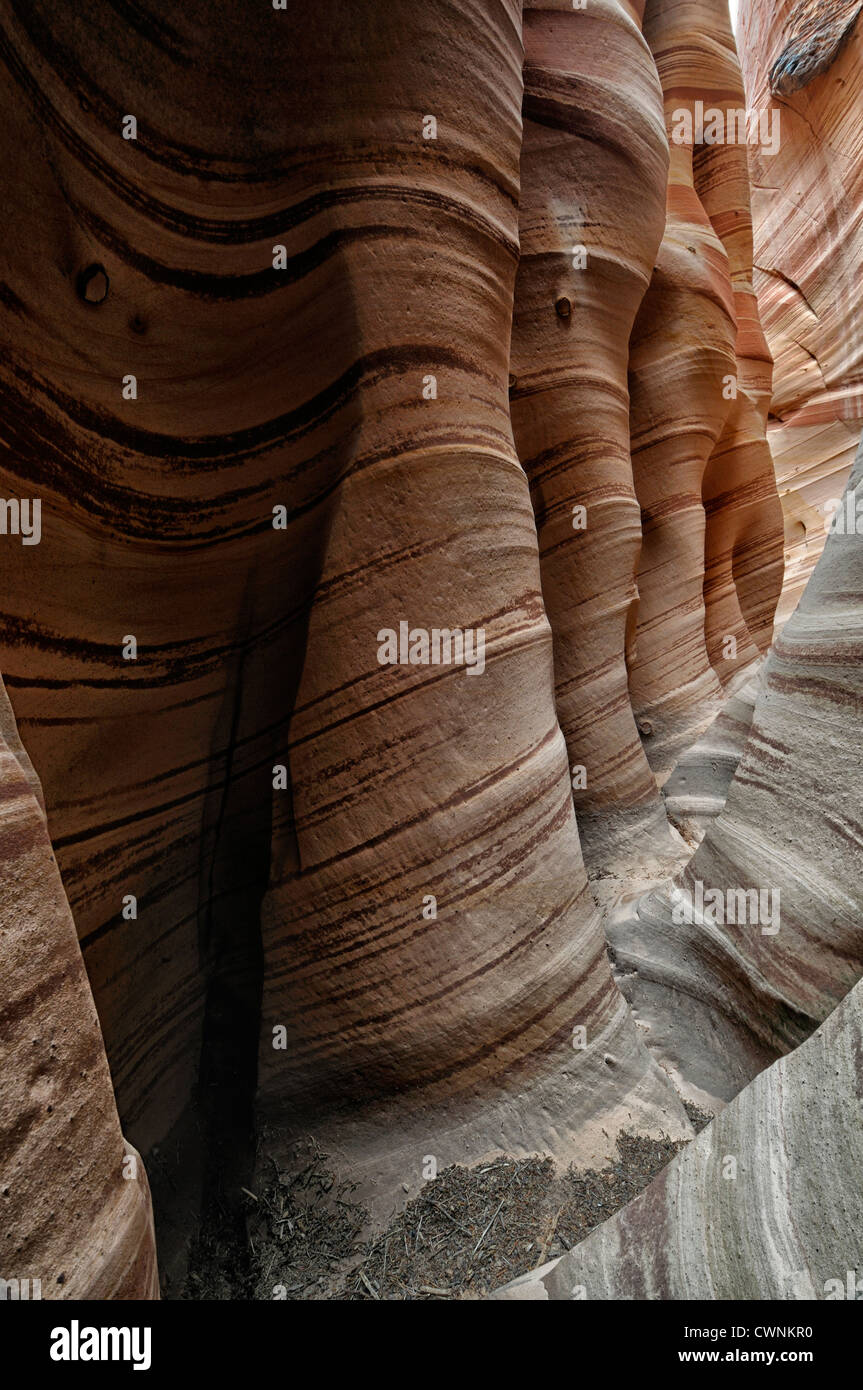 Zebra Slot Canyon Hole in the Rock Road Grand Staircase Escalante National Monument Utah USA Stock Photo