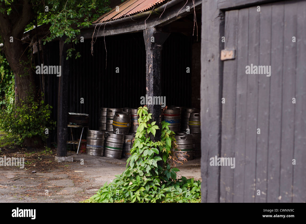 A cache of metal beer barrels in a pub porch storage space overgrown with climbing plants. - Stock Image
