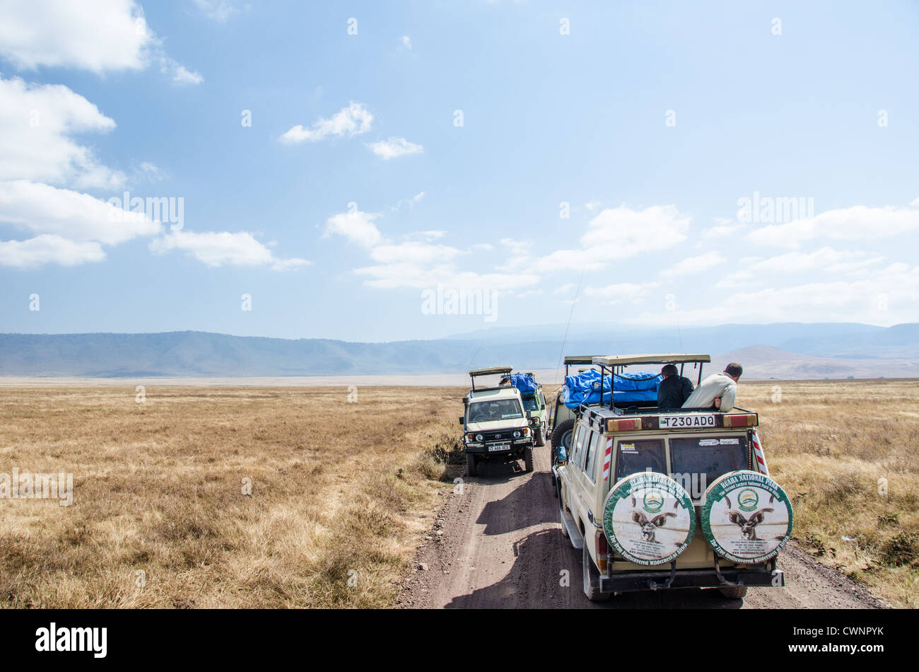 NGORONGORO CONSERVATIONAL AREA, Tanzania - Safari vehicles stopped to watch wildelife at Ngorongoro Crater in the - Stock Image