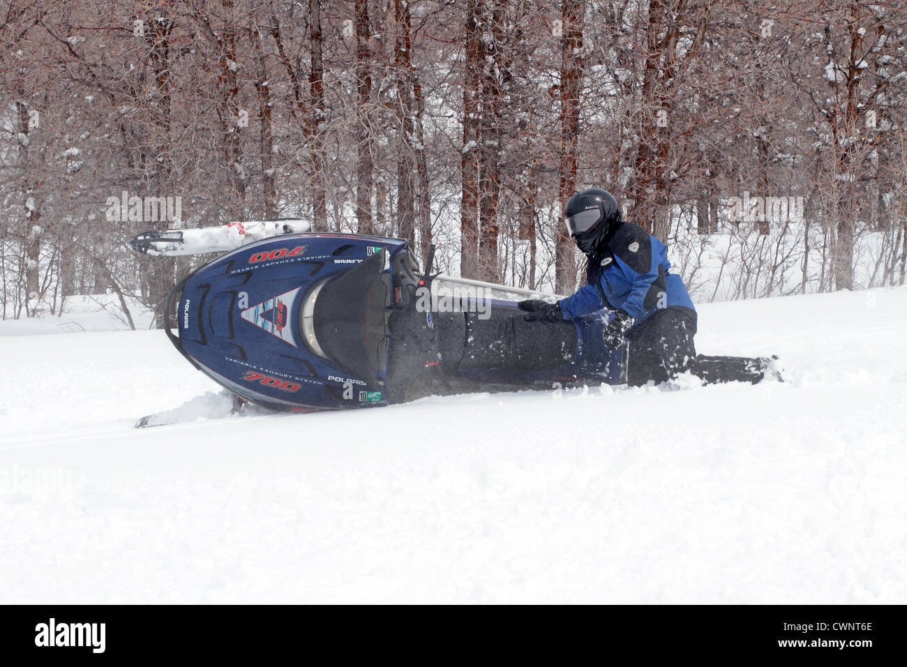Snowmobile rider having fun and turning in fresh white snow. Sharp turns result in an overturned snowmobile. - Stock Image