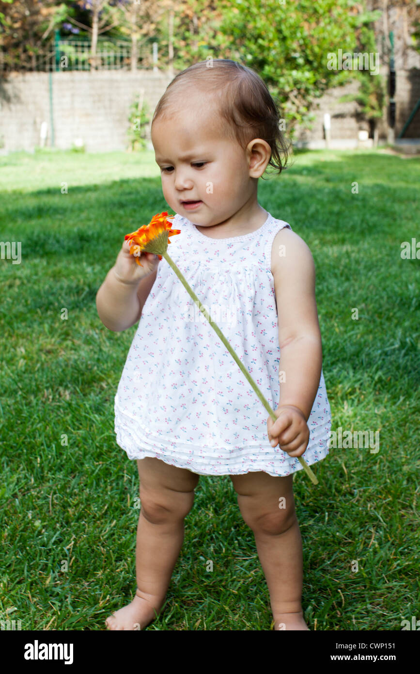 Baby girl holding daisy Stock Photo