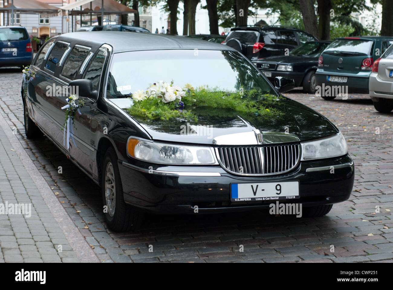 Wedding Limo Lincoln Town Car Black Stock Photo 50271789 Alamy