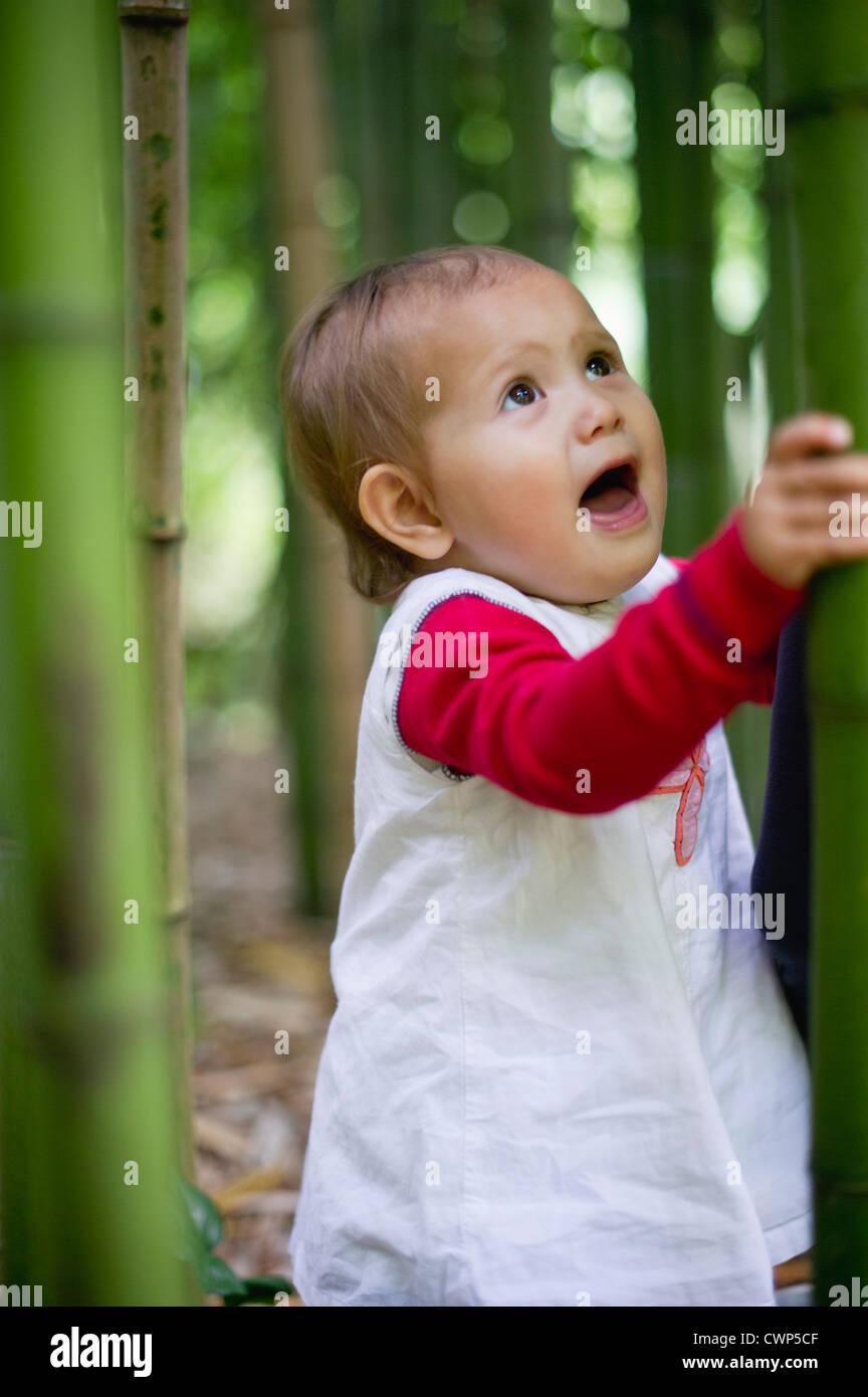 Baby girl in bamboo grove - Stock Image