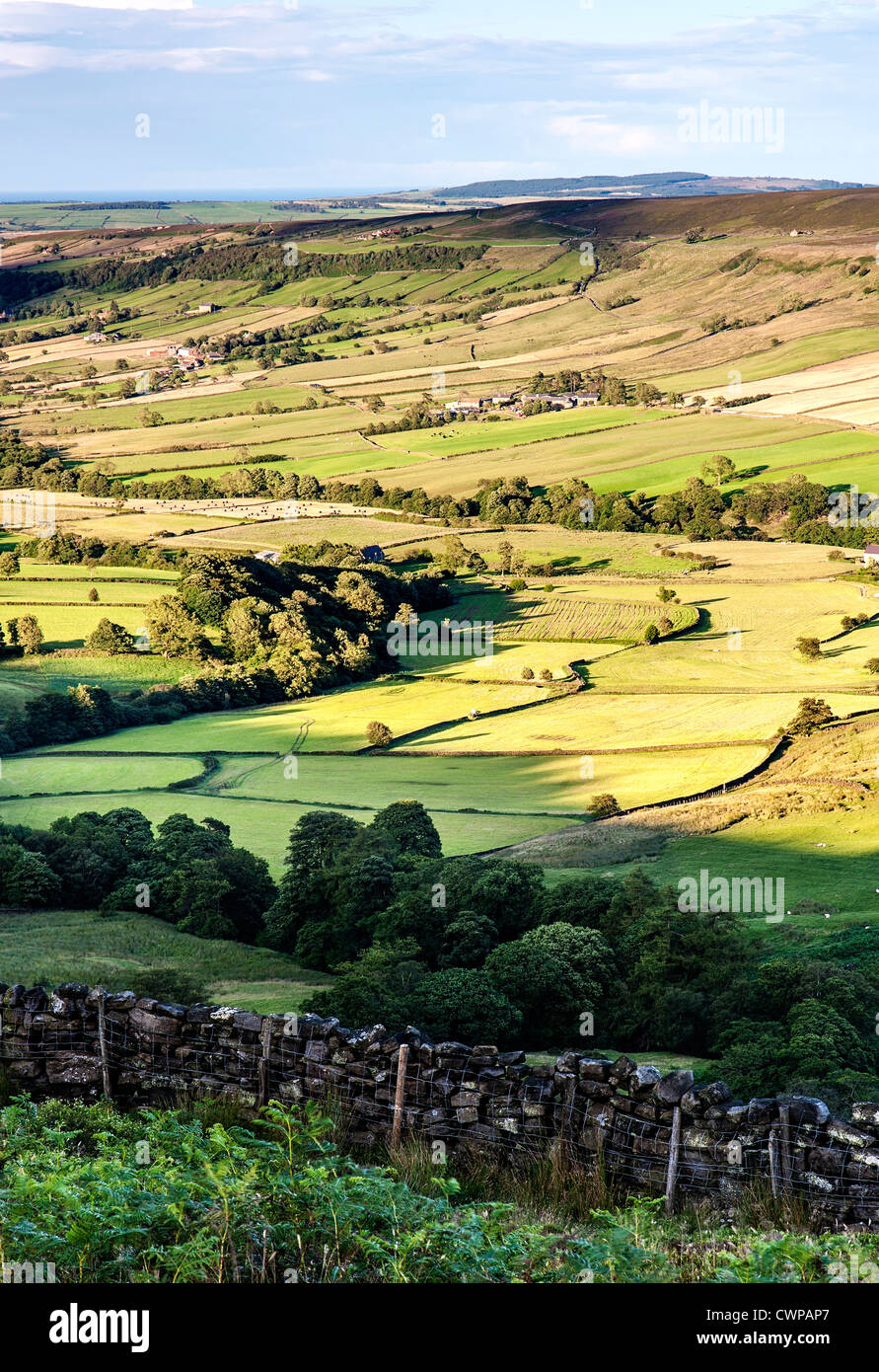 A view overlooking Danby Dale from Danby Rigg on the North Yorkshire Moors - Stock Image