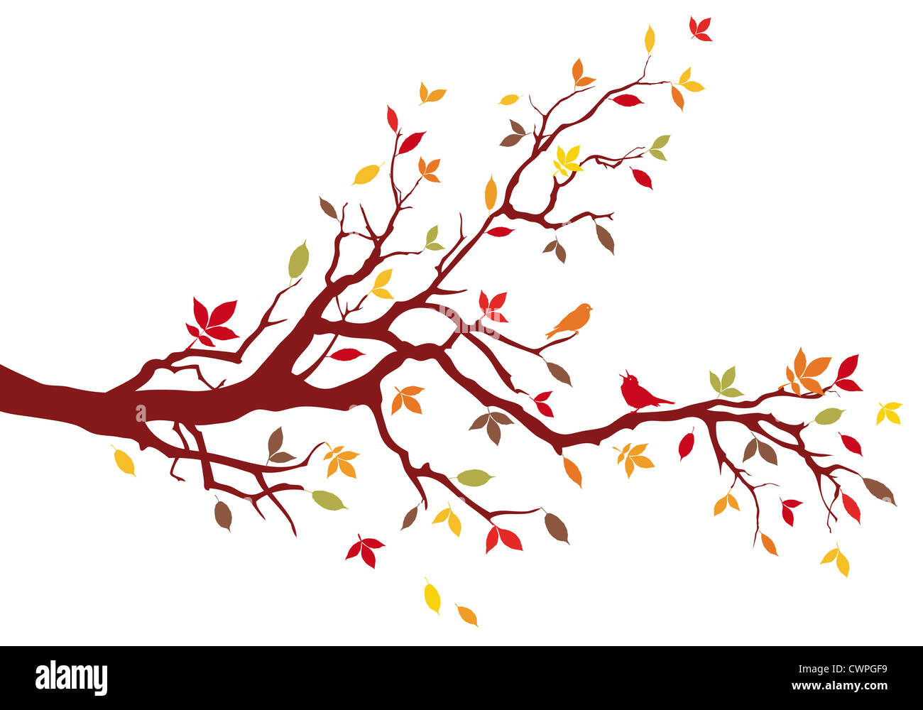 Autumn tree branch with colorful leaves, background illustration - Stock Image