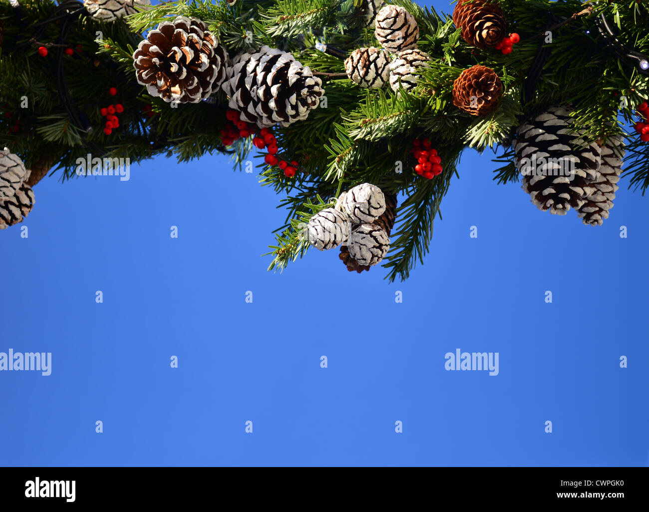 Festive christmas decoration with pine cones on blue sky with copy space Stock Photo