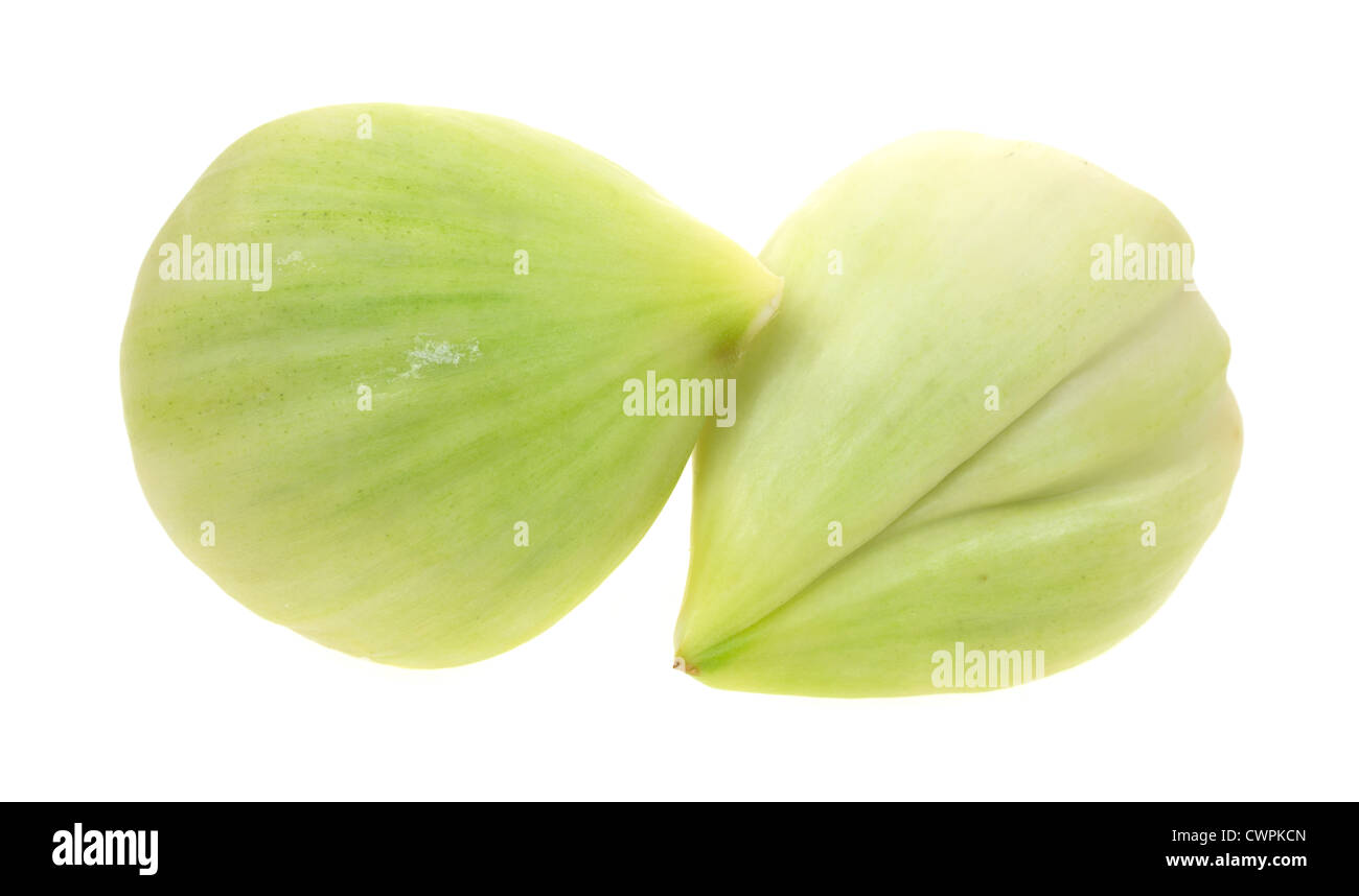 Two large peeled elephant garlic cloves on a white background. - Stock Image