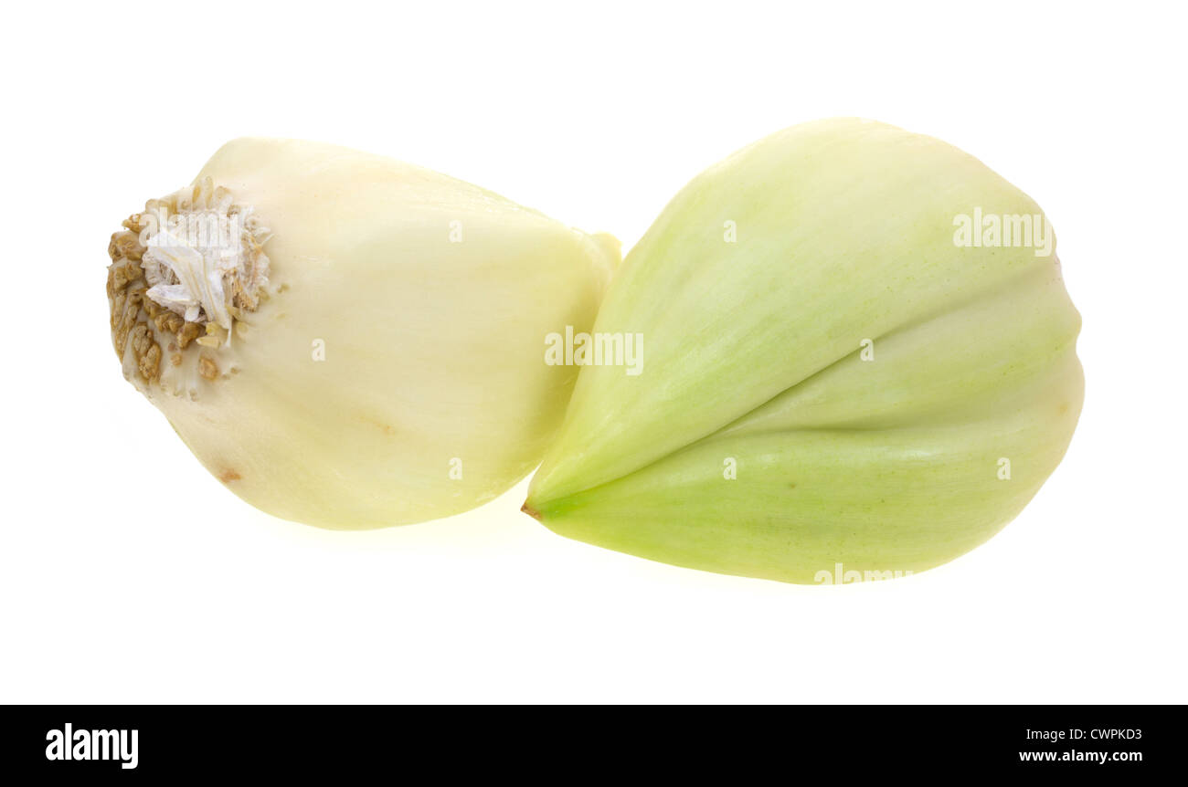 Two cloves of elephant garlic arranged on a white background - Stock Image