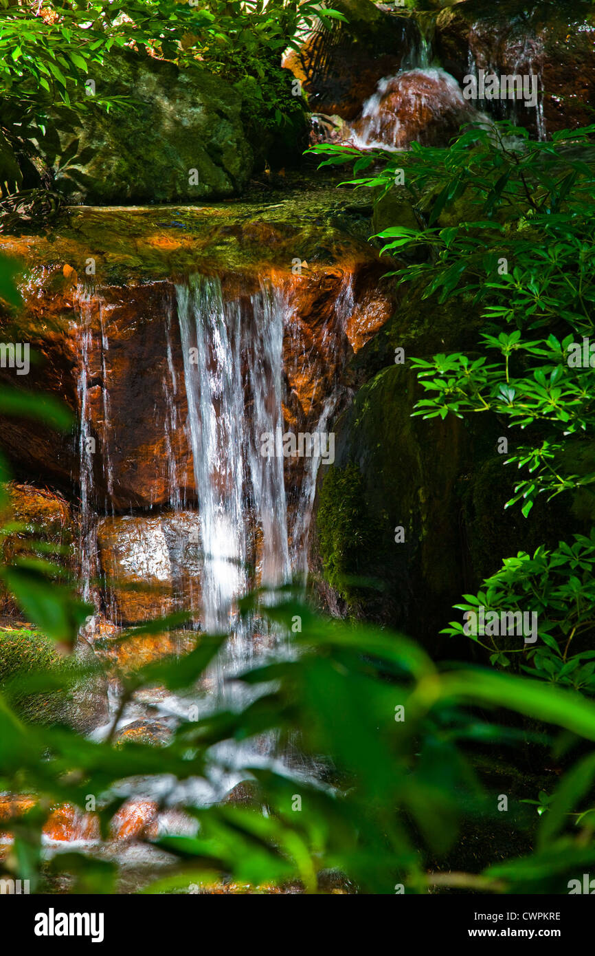 A feature waterfall in a Japanese garden, Vancouver, British Columbia, Canada - Stock Image