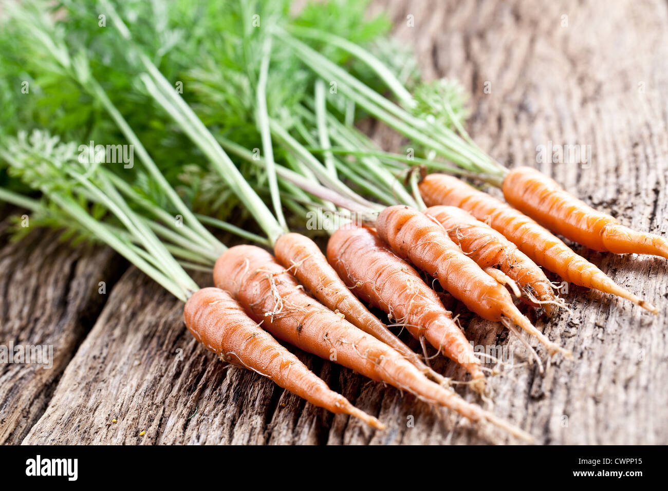Carrots with leaves on a old wooden table. - Stock Image