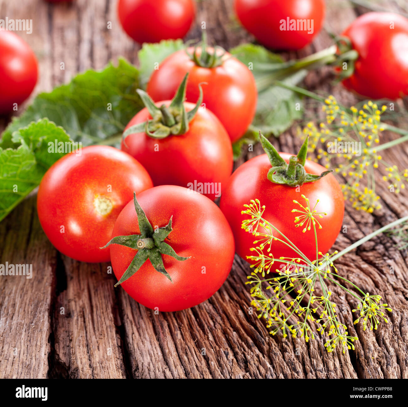 Tomatoes, cooked with herbs for the preservation on the old wooden table. - Stock Image