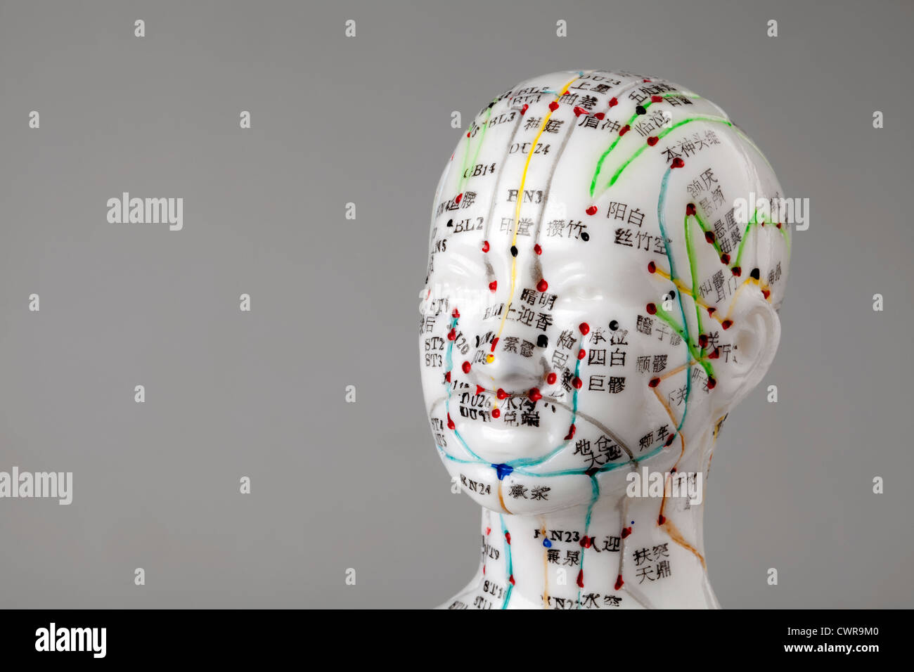 A female model with marked acupuncture points, Chinese characters on the meridians, traditional Chinese medicine - Stock Image