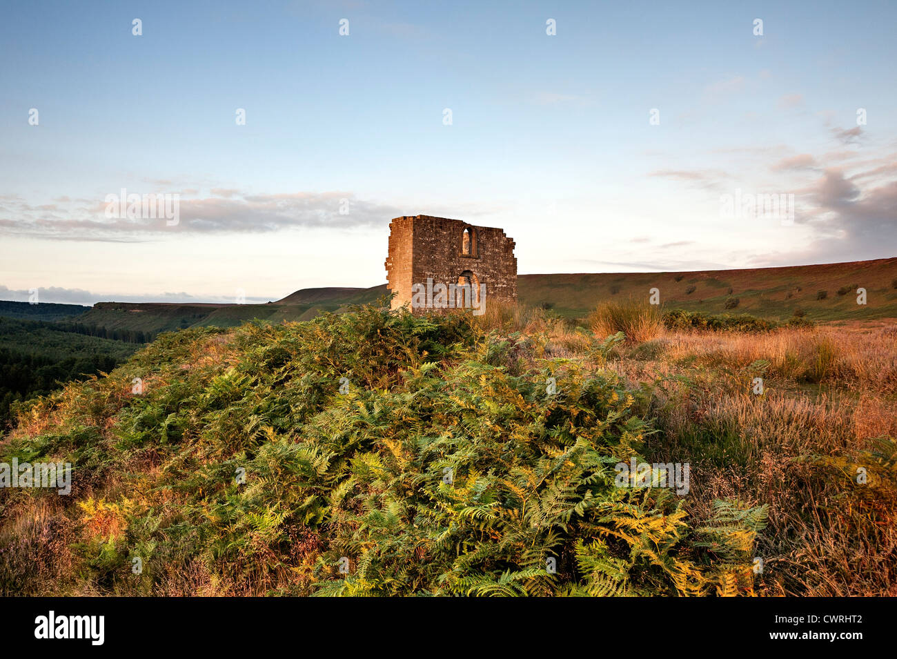 The ruin of Skelton Tower overlooking Newtondale in the North Yorkshire Moors National Park - Stock Image