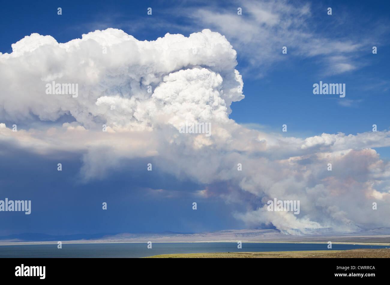 smoke and a cloud rises above a wildfire near Mono Lake - Stock Image