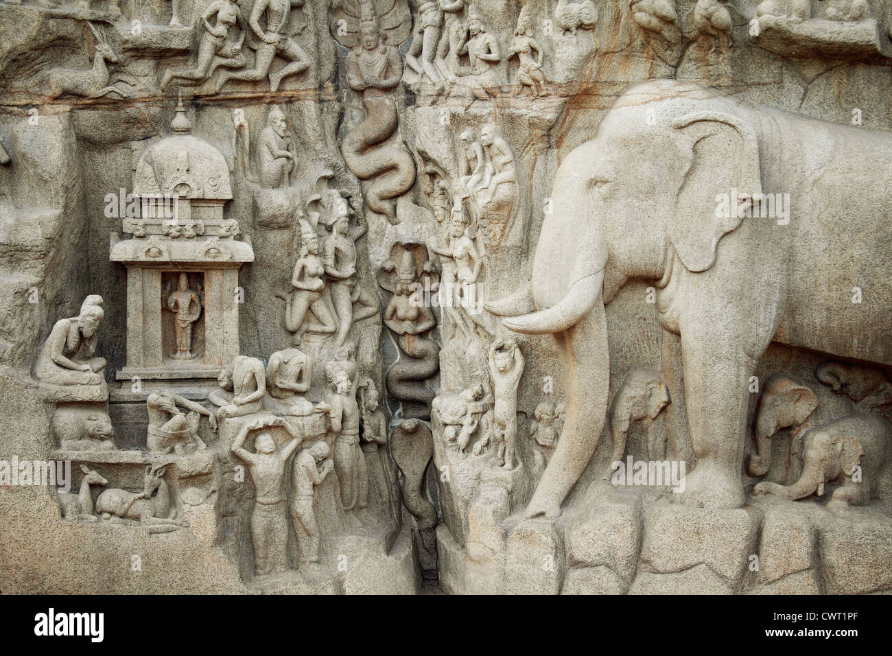 Arjuna's Penance - Descent of the Ganges, Bas-relief in Mahabalipuram, India - Stock Image