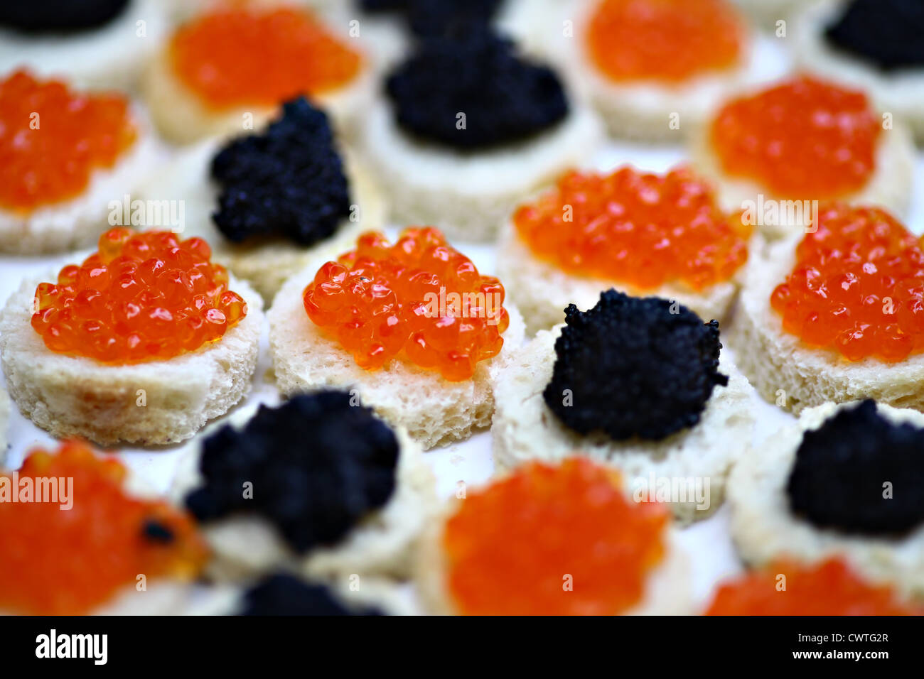 Red and black caviar on slices of bread - Stock Image