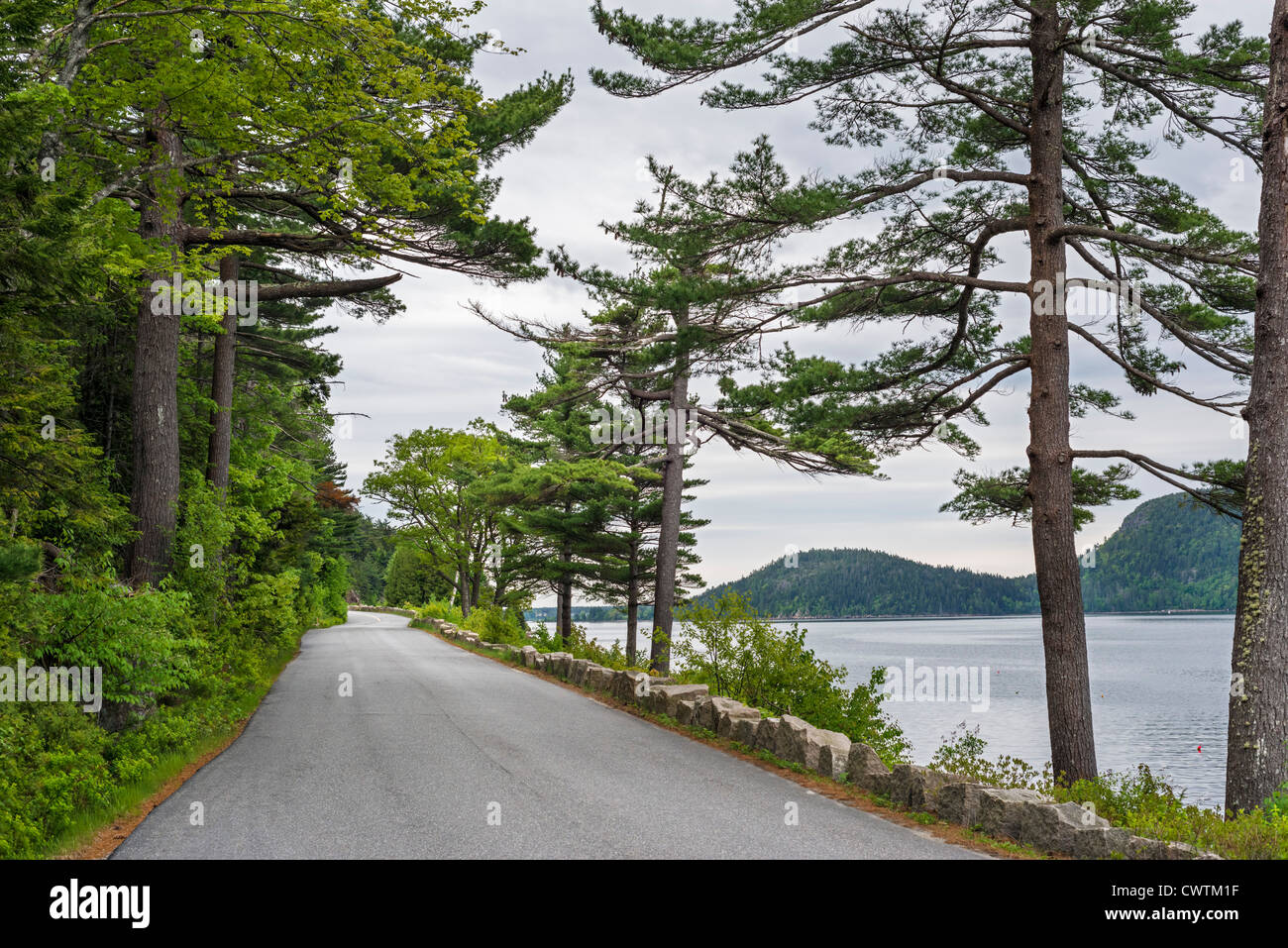 Sargent Drive alongside Somes Sound in Acadia National Park, Mount Desert Island, Maine, USA - Stock Image