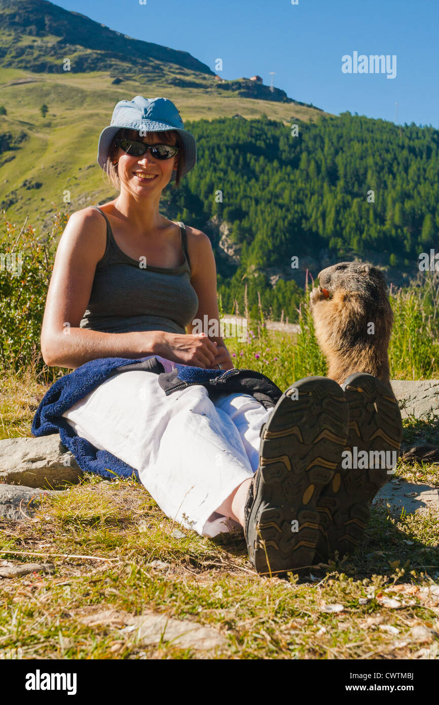 A marmot being fed carrots by a very pleased young woman in an alpine meadow. Saas Fee Switzerland. Stock Photo