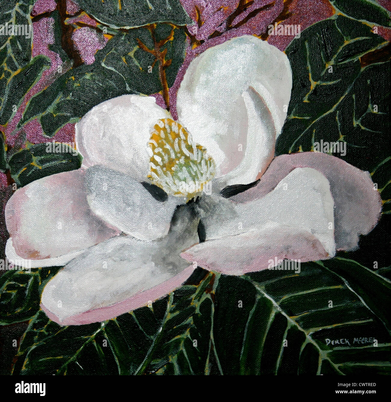Magnolia Flower Acrylic Painting Stock Photo 50332421 Alamy