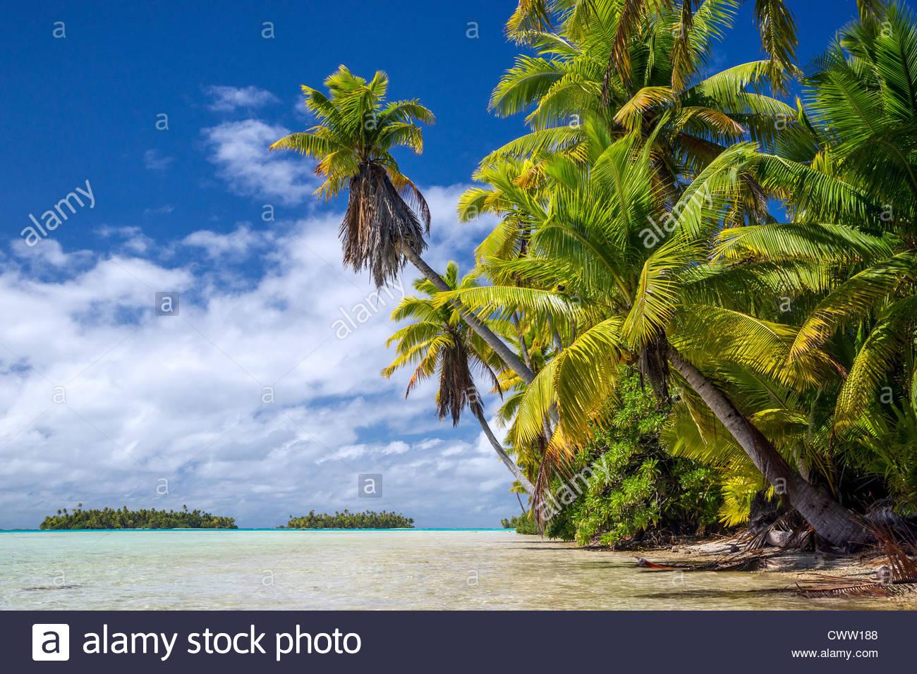 Rangiroa (Tuamotu archipelago - French Polynesia) : the blue lagoon - Stock Image